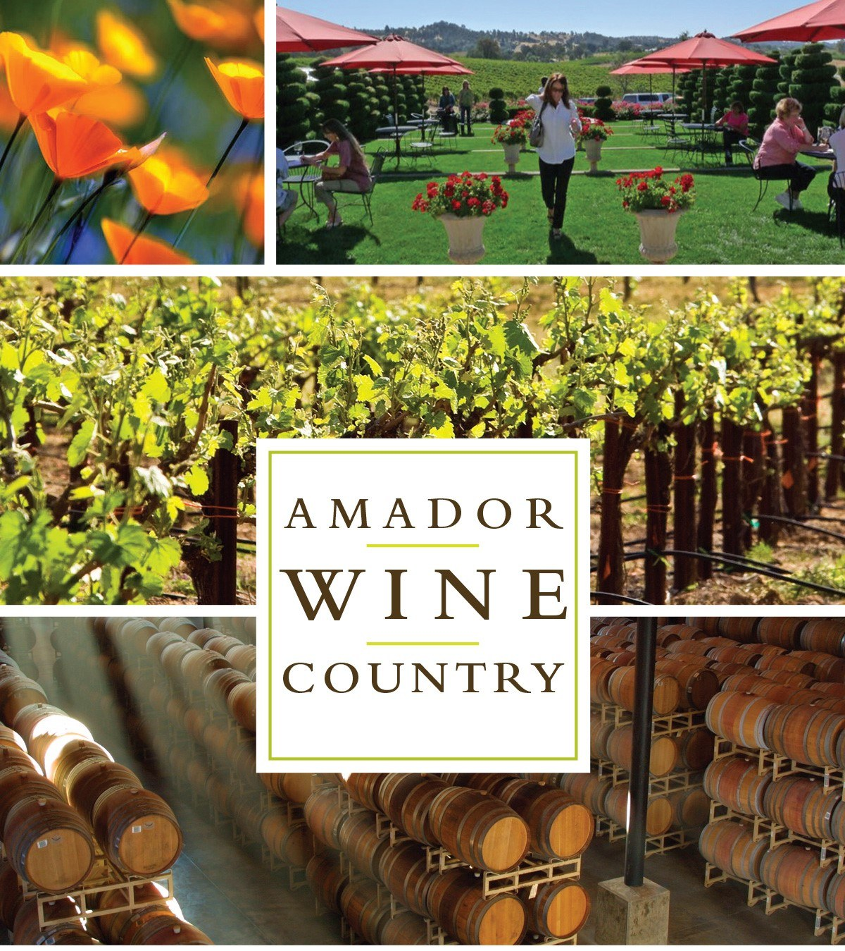 amador-wine-country